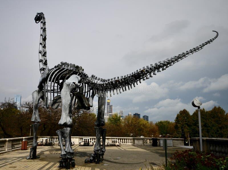 费尔德自然史博物馆室外恐龙 免版税库存图片
