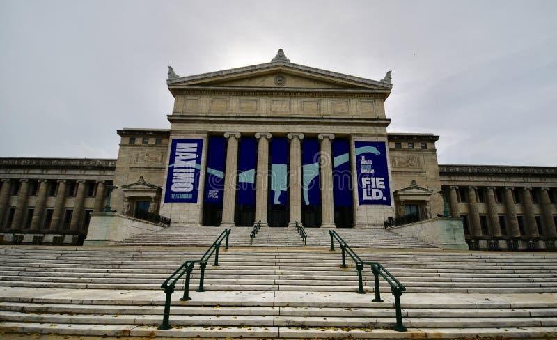 费尔德自然史博物馆的北部入口 免版税库存照片