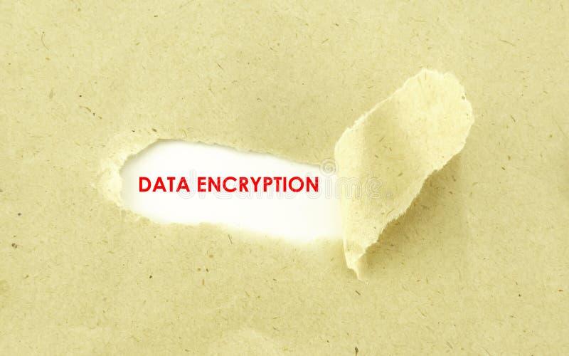 资料加密 免版税库存图片
