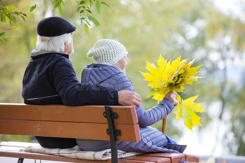 资深夫妇坐长凳在公园 免版税库存照片