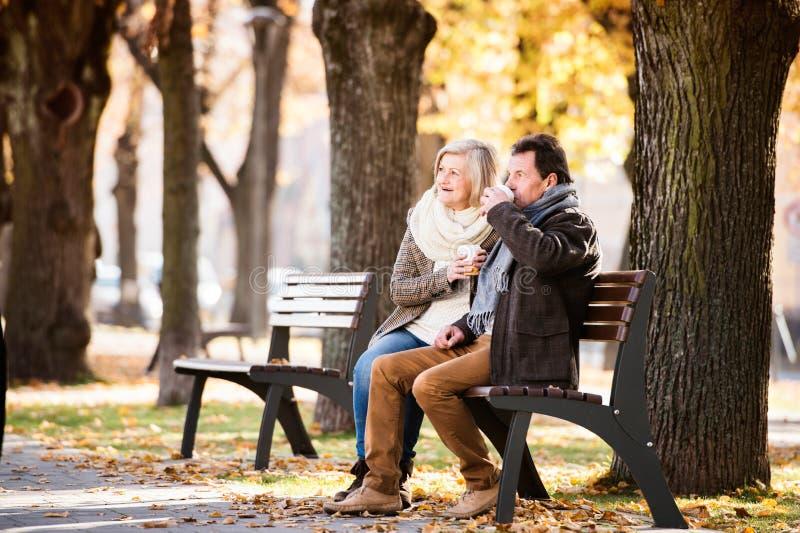 资深夫妇坐长凳,饮用的咖啡 秋天蓝色长的本质遮蔽天空 免版税图库摄影
