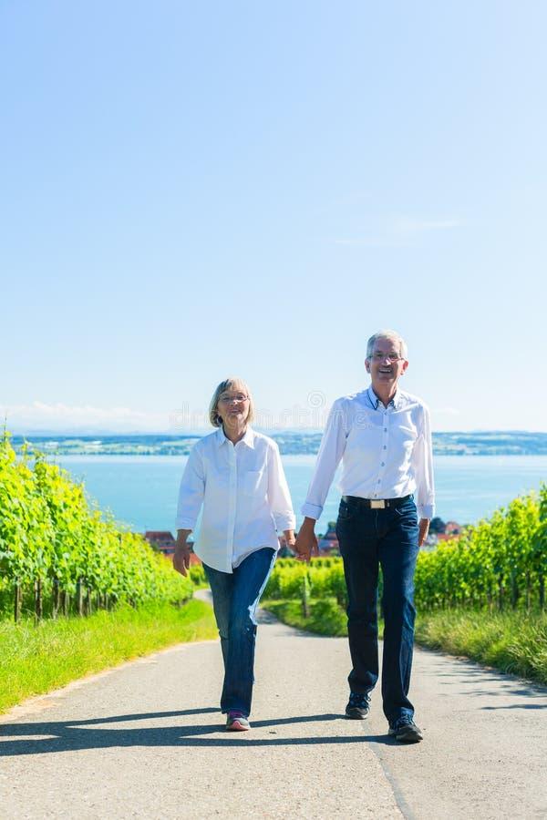 资深夫妇有步行在葡萄园 免版税库存照片