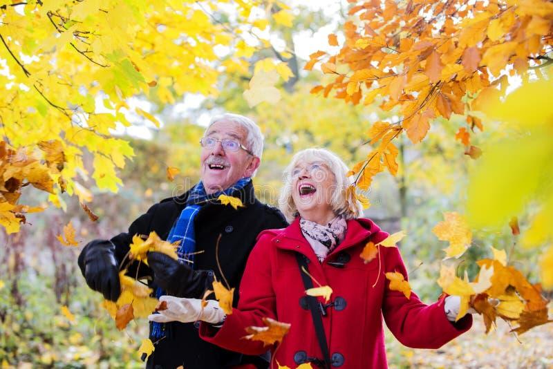 资深夫妇爱恋的秋天 免版税库存照片