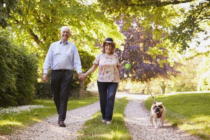 资深夫妇走的宠物牛头犬画象在乡下 免版税库存图片
