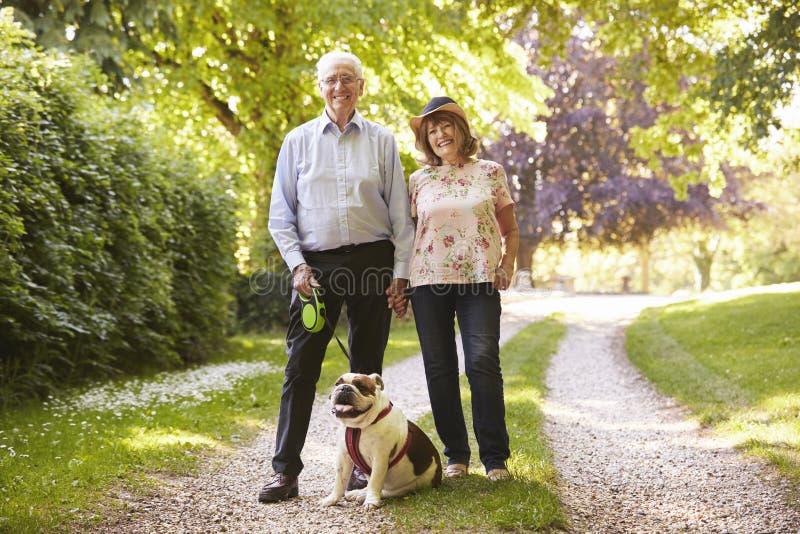 资深夫妇走的宠物牛头犬画象在乡下 免版税库存照片
