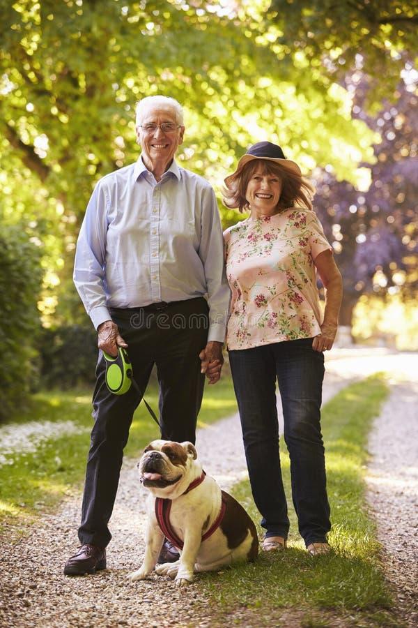 资深夫妇走的宠物牛头犬画象在乡下 免版税图库摄影