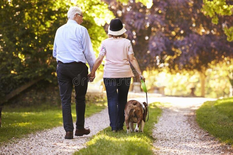 资深夫妇走的宠物牛头犬背面图在乡下 免版税图库摄影