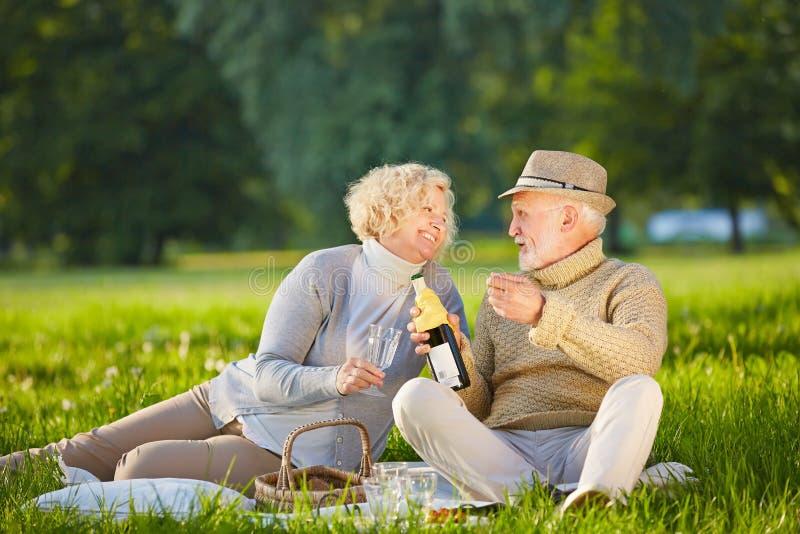 资深夫妇饮用的酒在夏天 免版税库存图片