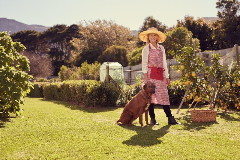 资深妇女在她的有忠实的爱犬的后院 免版税库存图片
