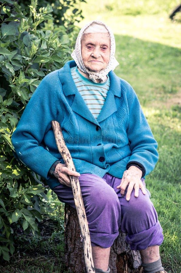 资深妇女坐拿着长的藤茎的日志 库存图片