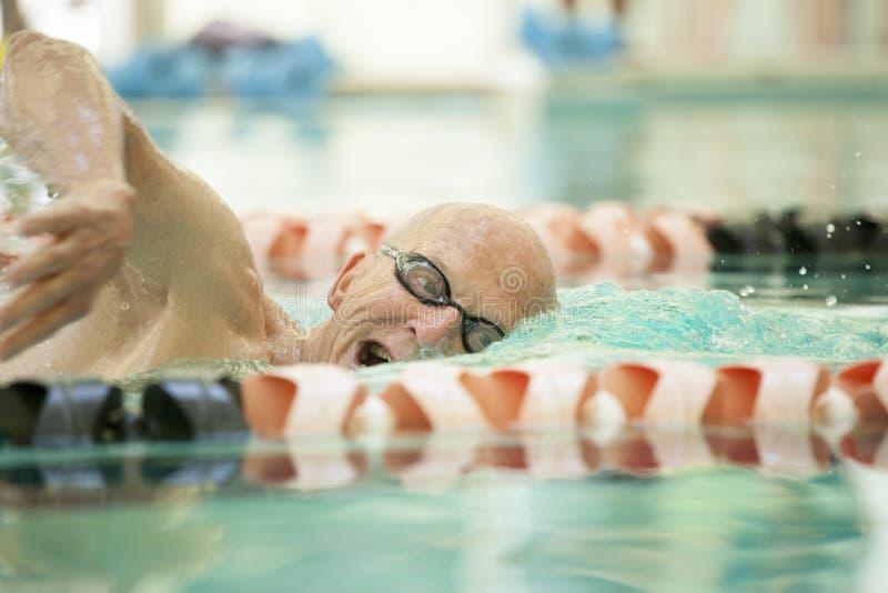 资深游泳者特写镜头  免版税图库摄影