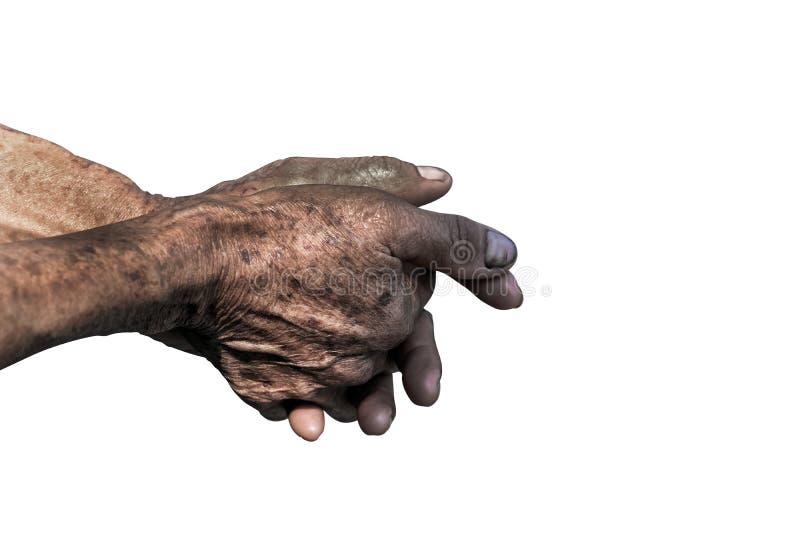 资深老手和胳膊 手指和钉子与静脉 年迈的人起皱纹的皮肤  免版税图库摄影