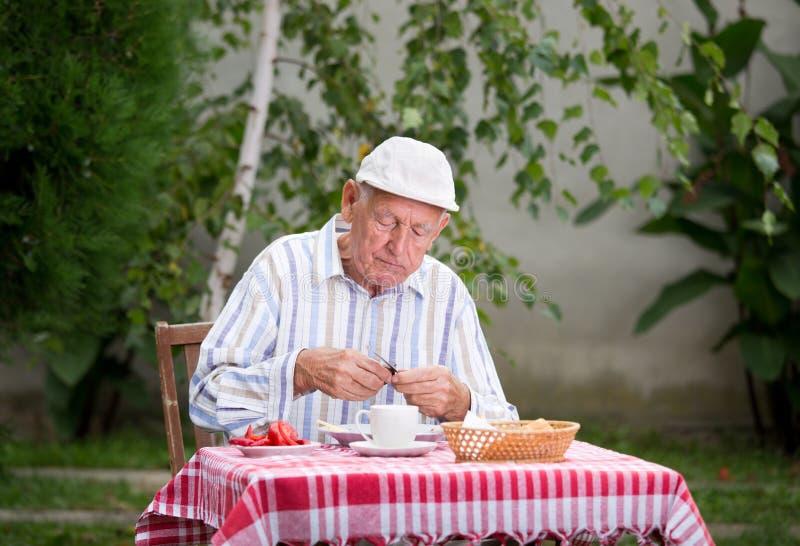 资深食人在庭院里 图库摄影
