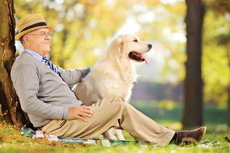 资深绅士和他的狗坐地面在公园 库存照片