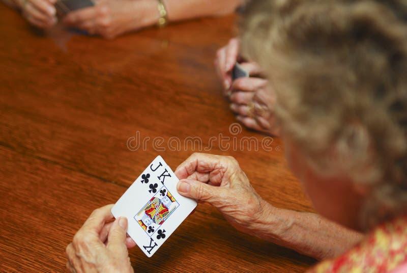 赌博的前辈 免版税库存图片