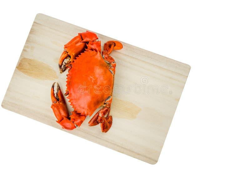 赛拉serrata顶视图  一蒸了在木切板的螃蟹在与拷贝空间的白色背景 免版税库存照片