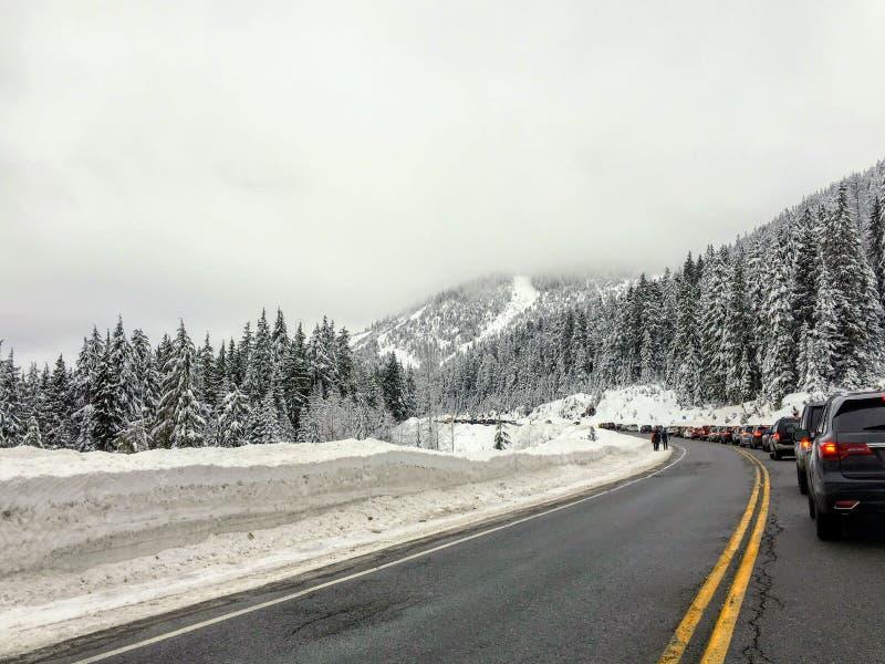 赛普里斯山路包装与汽车通行作为本机,并且访客看享用新鲜的雪 免版税库存图片