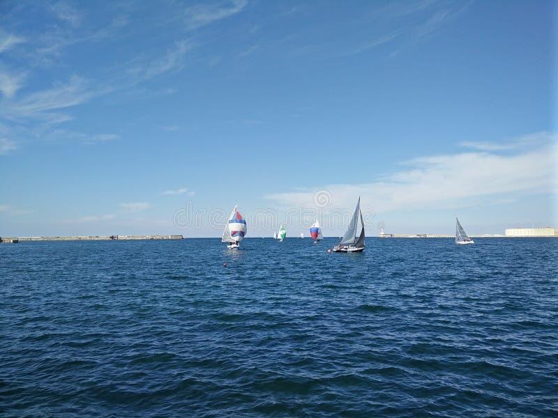 赛船会在塞瓦斯托波尔 免版税库存照片