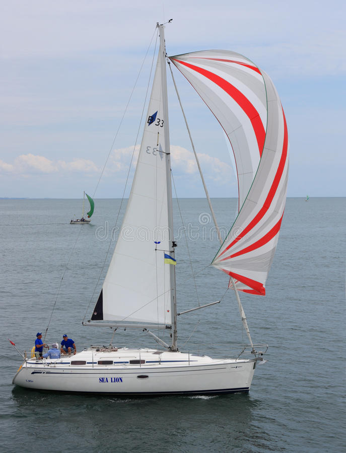 赛船会帆船 库存图片