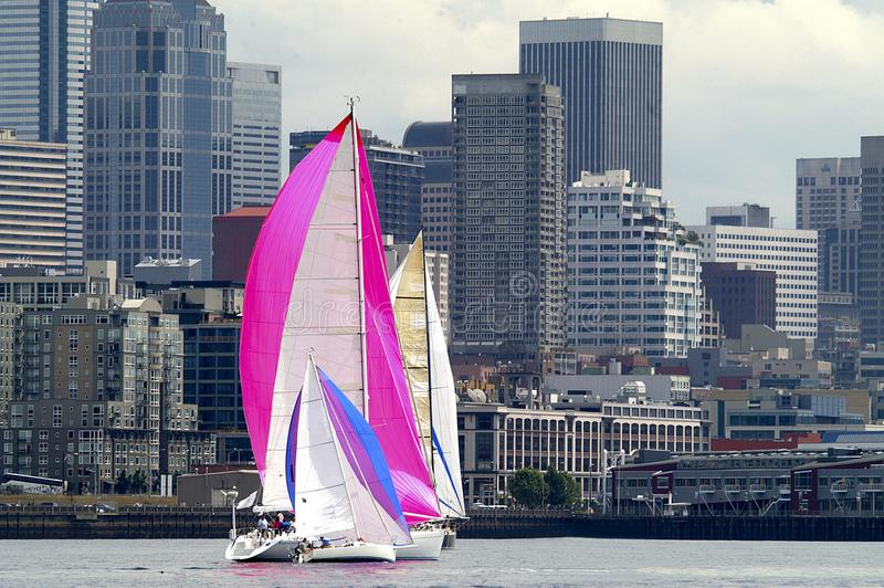 赛跑在皮吉特湾,西雅图,华盛顿州的风船 库存照片