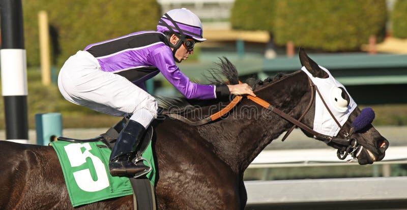 赛跑接近的骑师  免版税图库摄影
