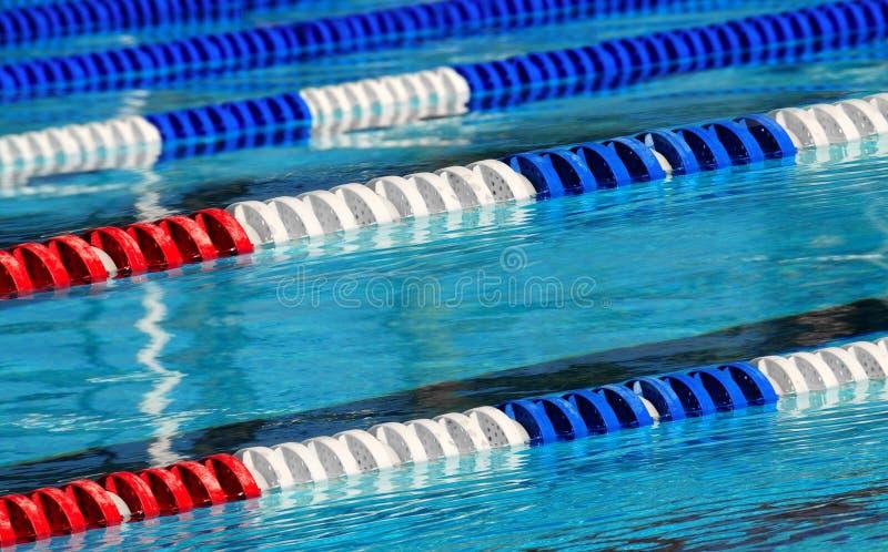 赛跑游泳的运输路线 库存图片