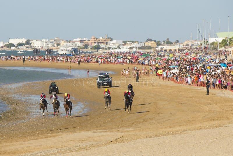 赛马在Sanlucar海滩  库存图片