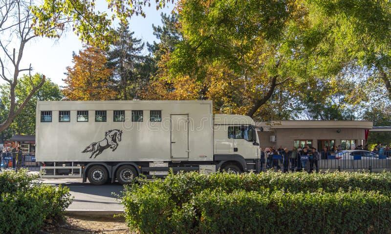 赛马运输卡车 免版税库存图片