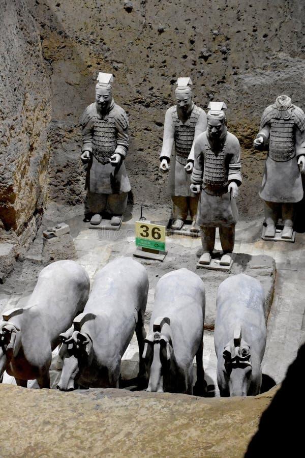 赤土陶器战士和马,西安,中国军队  库存照片