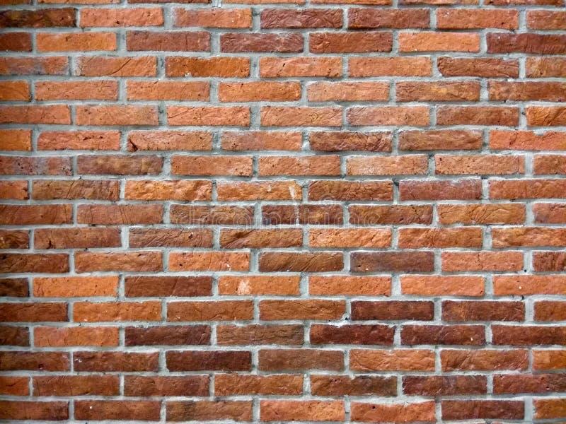 赤土陶器砖墙背景 免版税库存图片
