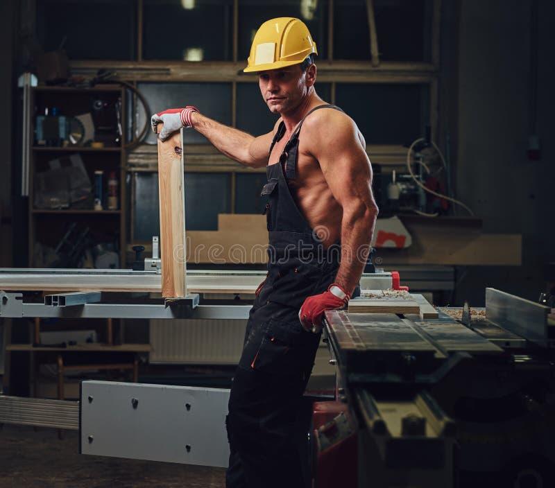 赤裸上身的肌肉木匠画象  免版税图库摄影