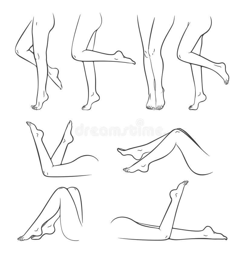 赤裸女性脚 向量例证