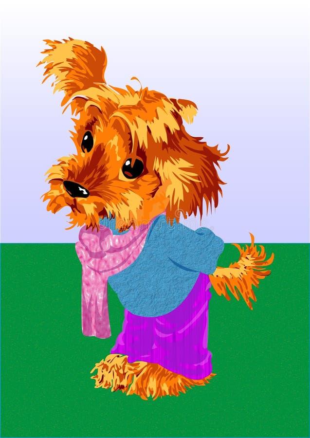 赤褐色小狗 免版税库存照片