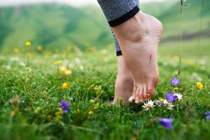 赤足美丽的女孩在草的凉快的早晨露水 免版税库存图片
