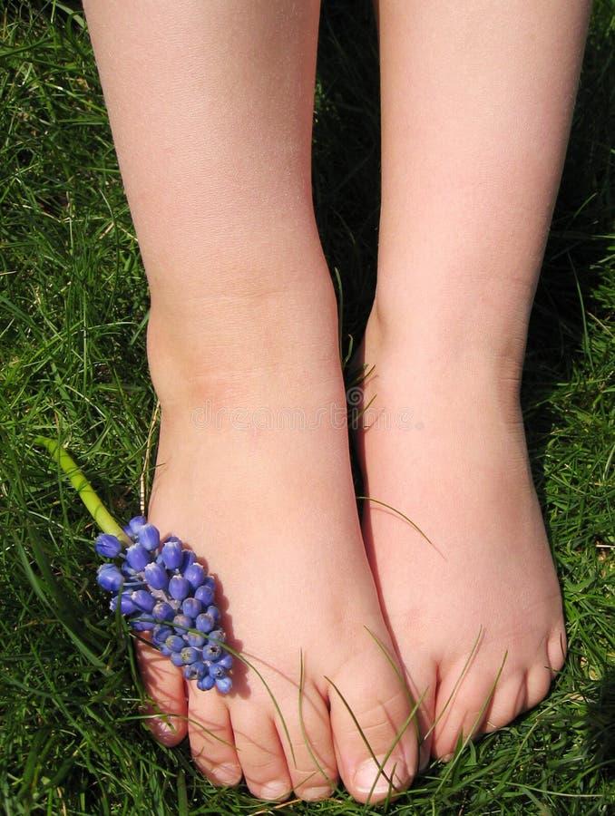 Download 赤足 库存图片. 图片 包括有 春天, 草坪, 自然, 科学, 子项, 皮肤, 作用, 英尺, 紫色, 绿色 - 177553