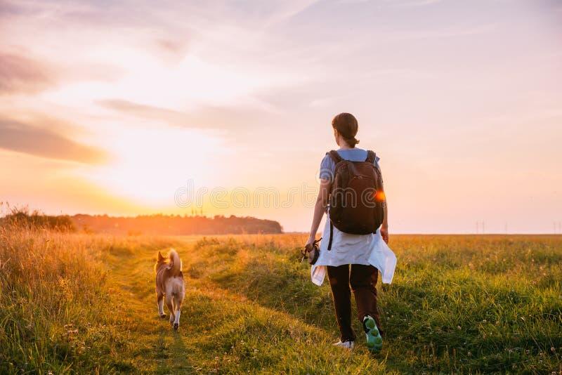 走与在夏天草地早熟禾D的狗的少妇背包徒步旅行者 免版税库存图片