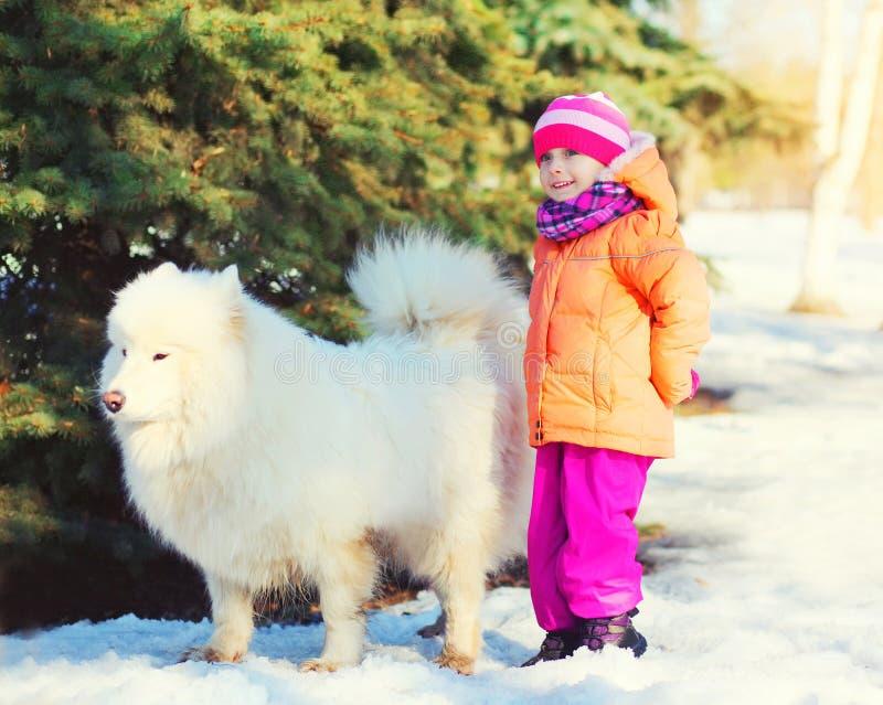 走与在雪的白色萨莫耶特人狗的小孩在冬天 图库摄影