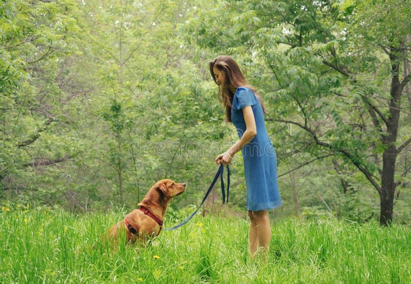 走与拉布拉多狗的妇女在夏天公园 免版税库存图片