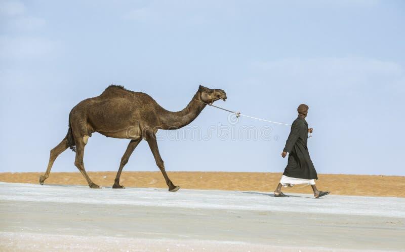 走他的骆驼的流浪的人 免版税库存图片