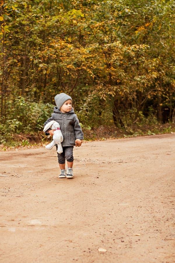 走和看人的害怕的失去的男孩在一件灰色外套的森林里用一个玩具兔子和蘑菇在他的手上 免版税图库摄影