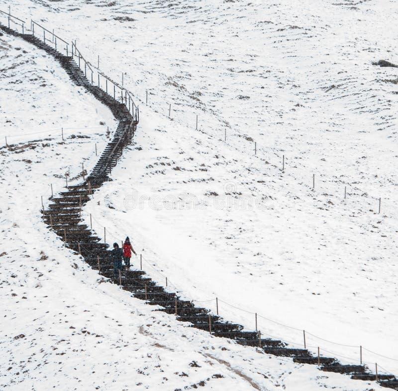 走在一丝多雪的自然痕迹的人们 免版税图库摄影