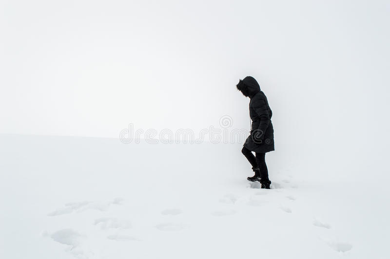 走在一个多雪的领域的妇女 库存照片