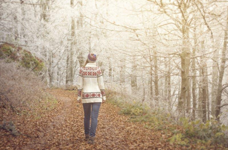 走在一条森林公路的女孩在秋天 库存图片