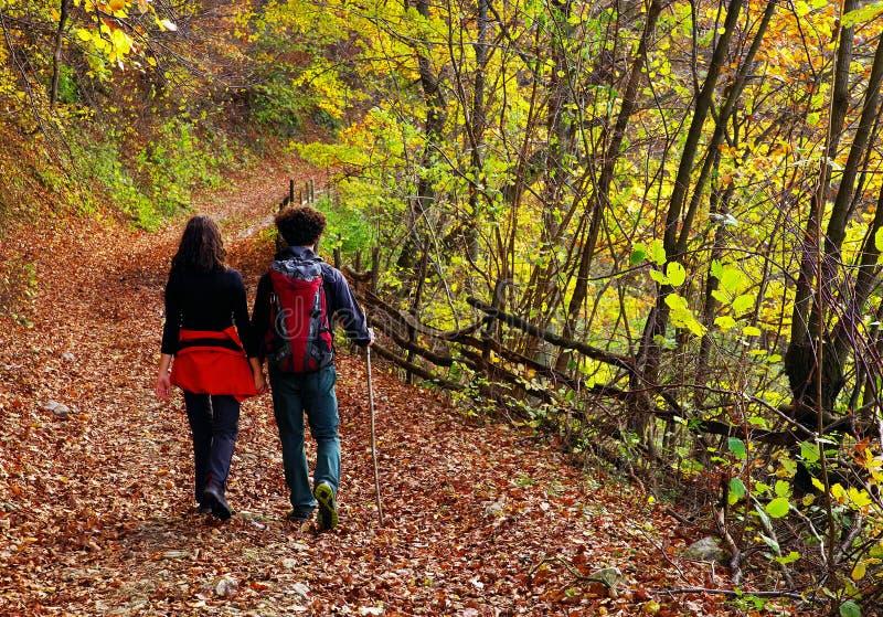 走在一条森林道路的年轻夫妇在秋天 免版税库存图片