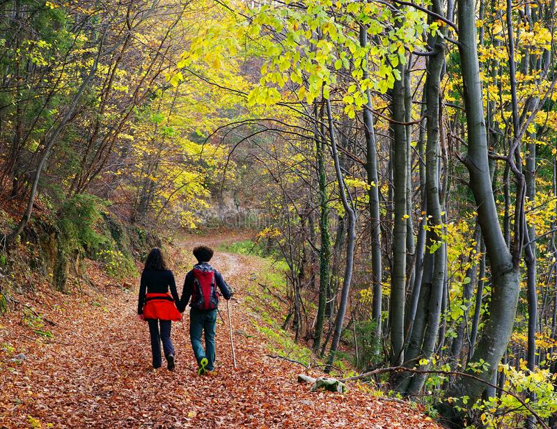 走在一条森林道路的年轻夫妇在秋天 免版税库存照片