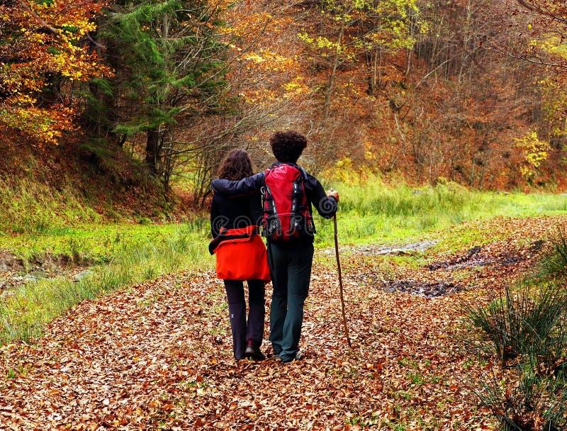 走在一条森林道路的年轻夫妇在秋天 图库摄影