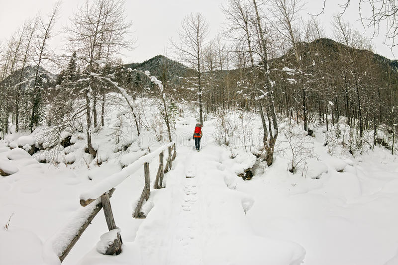走在一条冻河的一座桥梁的女孩背包徒步旅行者w的 免版税库存照片
