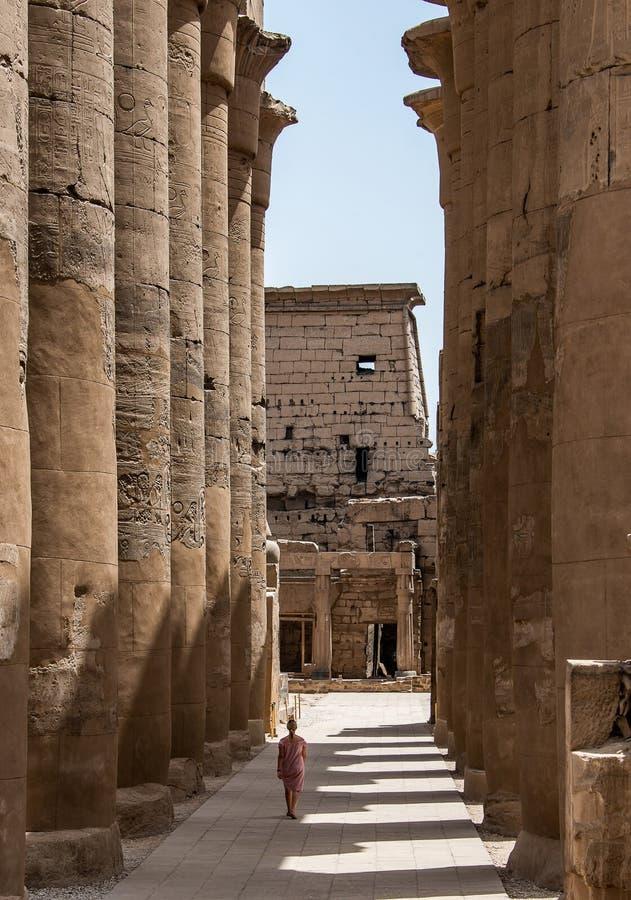 走在专栏旁边的女孩年轻女人在埃及拉美西斯二世卢克索神庙  库存图片