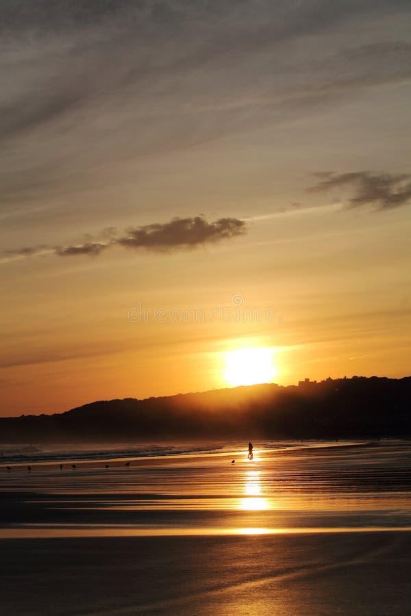 走在五颜六色的日出夏天天空的沙滩的人和狗美妙的剪影与反射 免版税库存照片