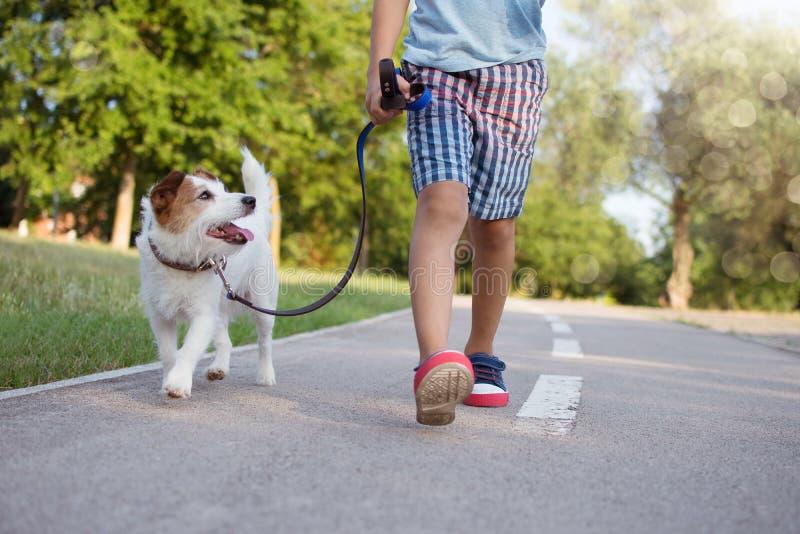走在公园日落的狗ANG小孩 友谊和守纪概念 免版税库存照片